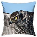 Kissenbezug mit Vogel-Falkenfedern, Augen, dekorativer Kissenbezug für Zuhause, Sofa, Bett, Auto, 45,7 x 45,7