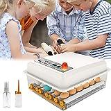 PAKASEPT Inkubator, Vollautomatische Brutmaschine 16 Eier, Brutapparat mit LED Temperaturanzeige und Präzieser Temperaturfühler, Temperatur, für für Chicken Duck Bird Q