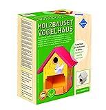 Pebaro Siva _466 466 Holzbauset Vogelhaus mit 9 unbehandelten Birkenholzplatten, Hammer und Nägeln, perfekte Geschenkidee für HobbyHandwerk