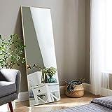 Elevens Standspiegel mit Schwarz Metallrahmen HD Groß Ganzkörperspiegel mit Haken für Wohnzimmer oder Ankleidezimmer (Gold, 140x40cm)