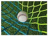Ballfangnetz Netz, Tor Netz Torwand Netz Fussball Tornetz Ersatz Fussballtor Ersatznetz Fussballtore Absperrung Tennisnetz Soccer Goal Net Tore Ball Übungsnetze Football Netz Tennis Training Netze