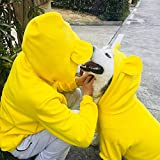 Haustierkleidung für Mädchen, Winterkleidung, warm, Hundekostüm, Hundejacke, Labrador, Haustierkleidung für Hunde, Kapuzenpullover, Kleidung für Haustiere (Farbe: Gelb, Größe: Herrenbesitzer-Kleidung)