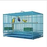YYDS Blauer Vogelkäfig aus Schmiedeeisen für Nymphensittiche, Graupapageien, Sonne, Sittiche, grüne Wangen, mit Zubehör (Größe: 59,9 x 39,9 x 39,9 cm)