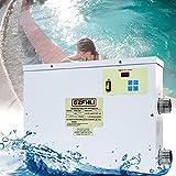 BoomSKLK Fachmann Pool Wärmepumpe, 45KW Luftwarmepumpe Poolheizung, Schnelles Aufheizen, Super fürs Schwimmbad (Size : 220V 5.5KW)