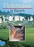 Fledermäuse in Bayern (Grundlagenwerke)
