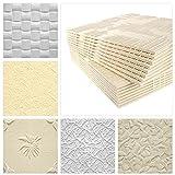 Deckenplatten aus Styropor EPS - Deckenpaneele leicht & robust im modernen Design - (18QM Sparpaket ZEFIR WEISS 50x50cm) Feuchtraum weiß Verkleidung