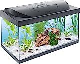 Tetra Regular Starter Line Aquarium-Komplettset mit LED-Beleuchtung stabiles 54 Liter Einsteigerbecken mit Technik, Regular Starterline, Futter und Pfleg