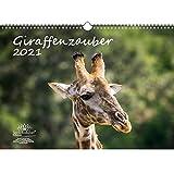 Giraffenzauber DIN A3 Kalender für 2021 Giraffen - Seelenzauber