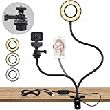 Led Selfie Ring Light Stand with Remote Control, Table Ring Light with with Webcam Holder or Phone Holder 3 Colors and 10 Brightness Webcam licht Levels for Tiktok/YouTube/Makeup/Online Chat/Facebook