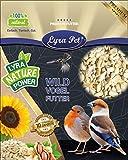 Lyra Pet® 10 kg Sonnenblumenkerne 10000 g geschält BRUCH HK Deutschland Vogelfutter Winter Ernte 2020