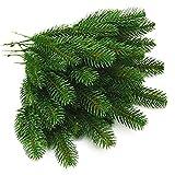 PiniceCore 10 Stück Künstliche Pflanzen Kieferzweige Weihnachtsbaum Zubehör DIY Künstliche Blumen Neue Jahr-Dekorationen Weihnachtsverzierung
