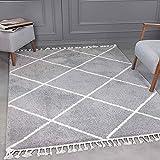 VIMODA Hochflor Teppich Super Weich Wohnzimmer in Grau Flauschig mit Franzen, Maße:160x230 cm