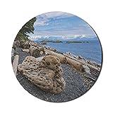Treibholz-Mauspad für Computer, Vancouver Island Rocky Beach Seaside Großes Holzstück, rundes rutschfestes dickes Gummi-modernes Gaming-Mousepad, 8 'rund, mehrfarbig