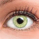 GLAMLENS Jasmine Light Green Grün + Behälter | Sehr stark deckende natürliche grüne Kontaktlinsen farbig | farbige Monatslinsen aus Silikon Hydrogel | 1 Paar (2 Stück) | DIA 14.00 | ohne Stärke