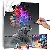 Bougimal Malen Nach Zahlen Erwachsene Tiere ohne Rahmen inklusive Pinsel und Acrylfarben - 40 x 50 cm, Elefant