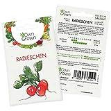 OwnGrown Premium Radieschen Samen (Raphanus sativus), Radieschensamen zum Anbauen, Radieschen Saatgut für rund 100