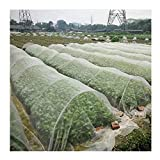 APODA Anti-Insekten- und Vogelschutznetz, Schutznetz für den Garten, Abdeckung für Pflanzen, Barriere zum Schutz von Kulturen vor schädlichen Insekten, feines Netz für den G