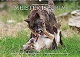 Meister Isegrim (Wandkalender 2022 DIN A2 quer): Zauberhafte Bilder aus dem Leben des Wolfes. Ein Kalender von Ingo Gerlach GDT. (Monatskalender, 14 Seiten ) (CALVENDO Tiere)