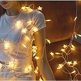 Sterne Märchenschnur LED Lichter Party Party Dekoration Weihnachtsoutfit wasserdichte Lichterketten Batterie 2m10 LED