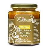 WILD HONEY Raw Natural Manuka Honig MGO 600+ 340g im Glas I bekannt durch TV Sternekoch I Laborberichte und Zertifik