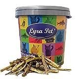 Lyra Pet® 5 kg Ochsenziemer Abschnitte Ochse Rind Rinderhaut Kauspaß Leckerli Kauartikel Hundefutter in 30 L T