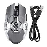 DaMohony Gaming-Maus, 2,4 G, kabellos, wiederaufladbar, DPI, 3 Stufen, verstellbar, RGB-Lichtmaus für PC / Notebook / Gamer