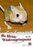 Die Kleine Wüstenspringmaus: Jaculus jaculus (Art für Art: Kleinsäuger)