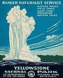 Feeling at home Kunstdruck-auf-Papier-cm_84_X_67-StudioW-Reise-Bild-Poster-Reisebroschüren-Broschüre-Werbung-Werbung-Amerika-Americana-Wildpark-Park-Yellow-Stone-Vin