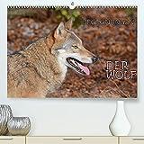 Begegnungen DER WOLF (Premium, hochwertiger DIN A2 Wandkalender 2021, Kunstdruck in Hochglanz)