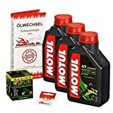 Motul 10W-40 Öl + HiFlo Ölfilter für Yamaha YZF-R6 /S Edition, 06-15, RJ11 RJ15 - Ölwechselset inkl. Motoröl, Racing Filter, Dichtring