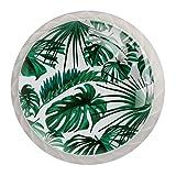 4 PCS Schubladenknopf,Grüner tropischer Palmblatt-Dschungel,Moebelknauf, Schubladengriffe, Kommodenknöpfe Schubladenknöpfe Set, Möbelgriff, modern, Knauf für Schrank Schublade Küche