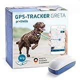 Prothelis Greta GPS Tracker Hund Mini 32g leicht   GPS Tracker für Hunde wasserdicht bis 10m   Peilsender für Hunde mit App Made in Germany weltweiter Einsatz   Hunde GPS Tracker k