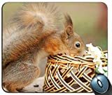 EichhörnchenNeugierMousepadGamingRechteckigeMauspad