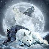 5D-Diamant-Malerei-Set zum Selbermachen, Motiv: Wolf, Mond und Wolf 30X30CM