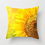 YUNSW Sonnenblumen Kissenbezug, 45x45 quadratischen Kissenbezug, mit verstecktem Reißverschluss, Büro Garten Terrasse Auto Dekoration, gibt es viele Farben