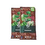 Plantura Bio Pinienrinde, 25-40 mm, 120 L, grob, naturbelassen & dekorativ, unterdrückt Unkrautwuchs