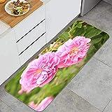 ZHIMI Küchenteppiche,rutschfeste Küchenteppich,Damast Rose Blume Kastilien Innsbruck Österreich,Waschbar Küchenmatten Teppichläufer für Esszimmer,Küche,Flur 45 x 120