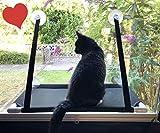 Premium Fensterplatz für die zufriedene Katze Katzenliege Mausblick 360° Ausblick Hängematte Fenstermontage Sonnenbad Katzen-Hängematte Fensterliegeplatz Fenster Bett Fensterbank TOP Saugnäp