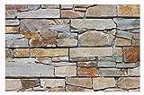W-001 Wanddesign Wandverblender Quarzit Steinwand - 1 Muster - Wandfliesen Natursteinfliesen Lager Verkauf Stein-Mosaik Herne NRW