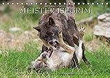 Meister Isegrim (Tischkalender 2022 DIN A5 quer): Zauberhafte Bilder aus dem Leben des Wolfes. Ein Kalender von Ingo Gerlach GDT. (Monatskalender, 14 Seiten ) (CALVENDO Tiere)