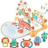 Baby Spielzeug für ab 0 3 6 12 Monate, Spielmatte Baby mit Spielbogen und Piano, Klaviermatte treten und spielen für Neugeborene Kleinkinder