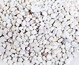 Msrlassn Kleine Steine zum Garten Kieselsteine Weiße Kies Dekosteine Naturstein Zierkies Kiesel für Gartendeko Stein Aquarium Dekokies Deko Steine (Weiß 1 kg)