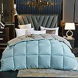 Goodlife-1 Vier Jahreszeiten Bettdecke 95 White Goose Daunendecke Klimatisierung Doppelbettdecke Komfort Fühlt Sich warm an Antiallergie Winter Warme Bettdecke-V_150x200cm - 2.5kg