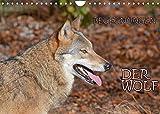 Begegnungen DER WOLF (Wandkalender 2022 DIN A4 quer)