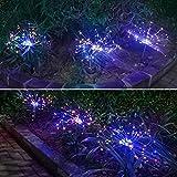 DHTOMC Solarleuchte LED Solar Lichterkette Outdoor Wasserdicht Garten Rasen Solar Löwenzahn Lichter Weihnachten Hochzeit Fee Girlande Dekoration (Farbe: 2, Größe: frei)
