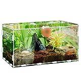 Keweni Acryl Terrarium Reptilien Box für Spinnenechsen, Skorpion, Tausendfüßler, Gehörnter Frosch, Käfer (30CM*20CM*15CM)