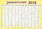 Jahresplaner Cartoon XL 2015 - Wandplaner / Plakatkalender (99 x 69)