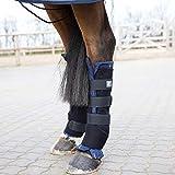 horze Stallgamaschen Pro, hinten, Atmungsaktiv, Stabilisierend, 2 Stück, Größen: Pony, Vollblut, Warmblut, Schwarz, Schwarz, C