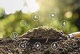 10Kg Rinderdung Obst Gemüse Heckenpflanzen Organischer Langzeitdünger Biodünger Bio
