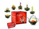 Creano Teeblumen Mix - Geschenkset Erblühtee Frühjahrslese mit Glaskanne Weißer Tee in 6 Sorten, Teerosen, Teeblume, Blooming Tea, Geschenk zu Ostern